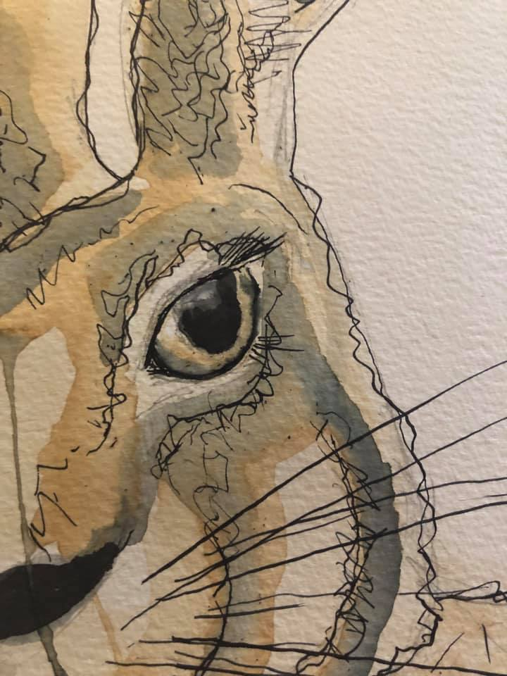 Hare Coffee & Ink